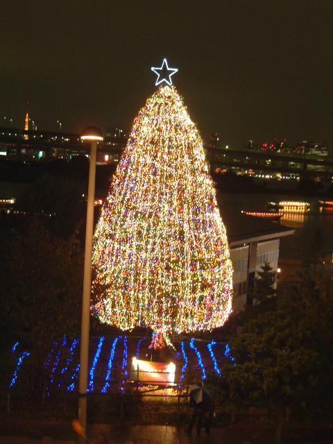 海浜公園 クリスマスツリー