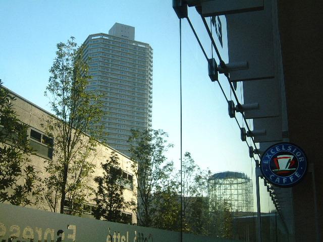 エクセルシオール豊洲センターアネックス店