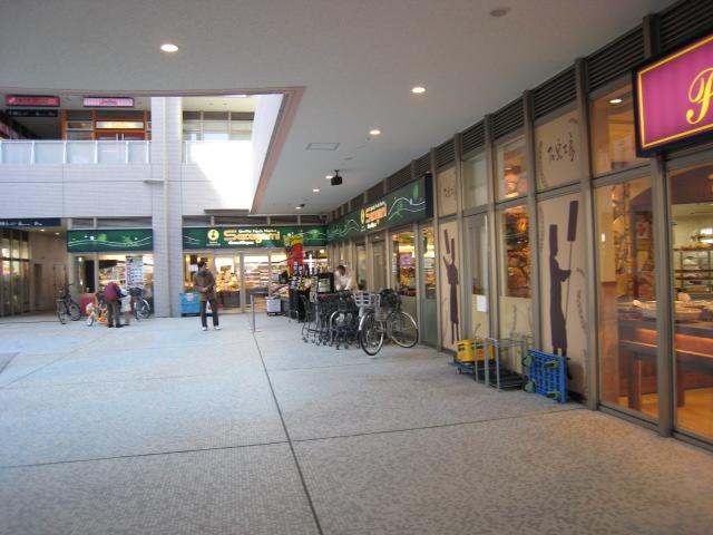 サカガミ豊洲店