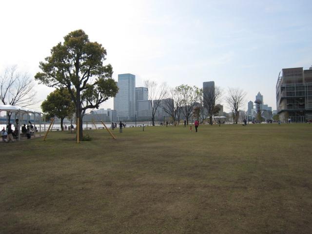 豊洲の公園の土はどこから?