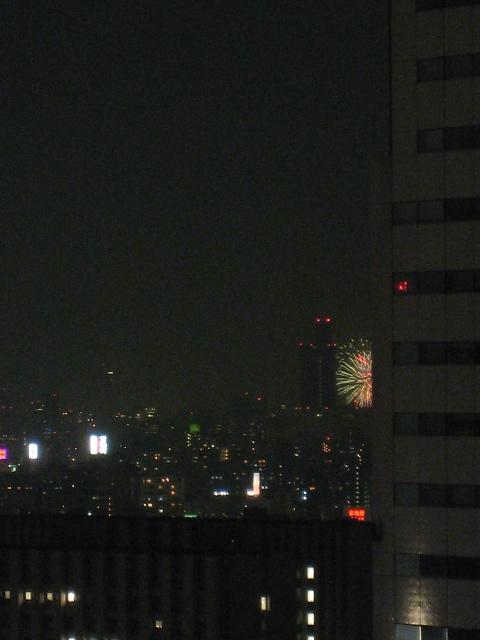 豊洲から見える?隅田川花火大会