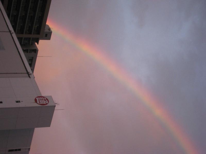 豊洲の空に虹が…