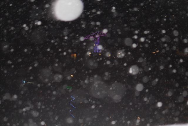 雪の豊洲 2011 その2