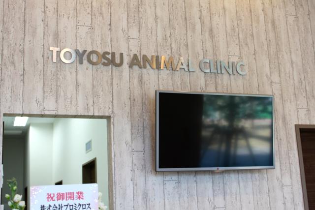 とよす動物病院 待合室