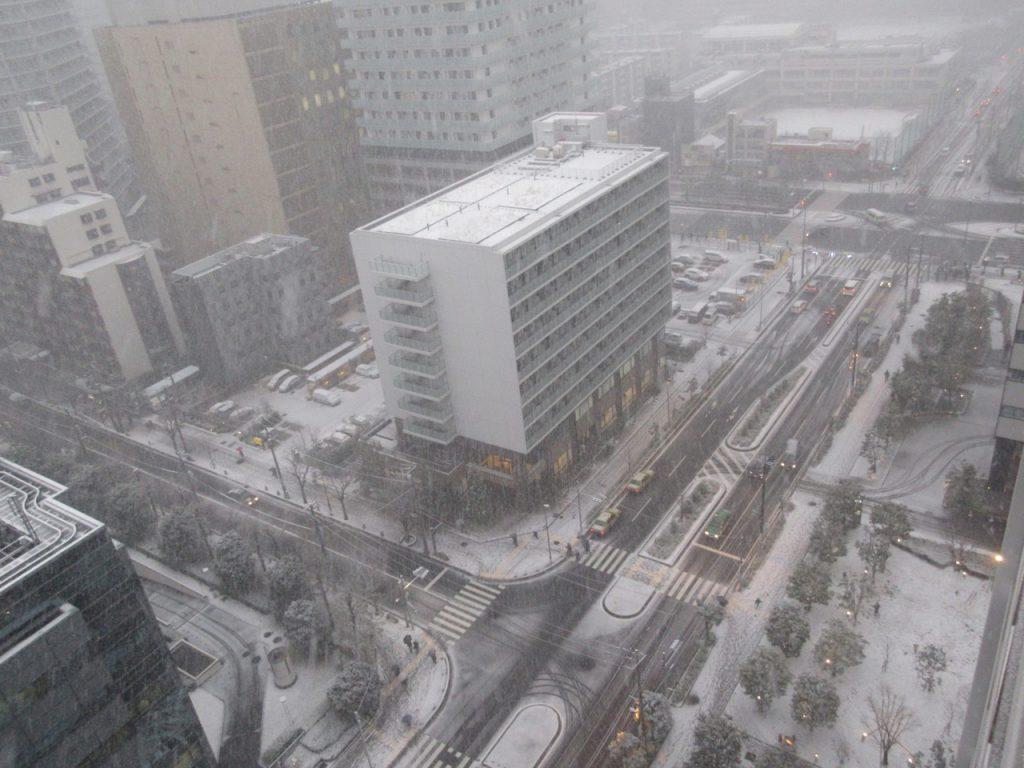 大雪の豊洲