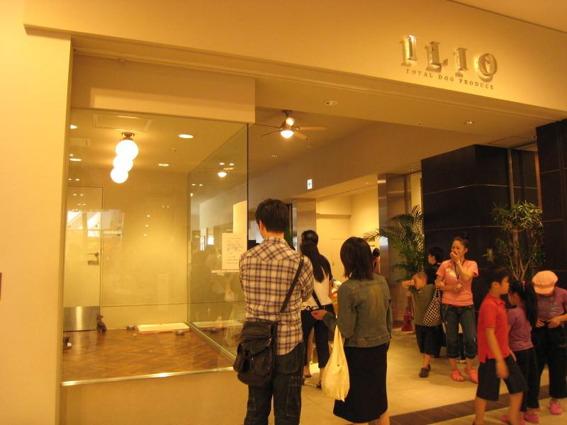 ILIO(イリオ)ららぽーと豊洲店