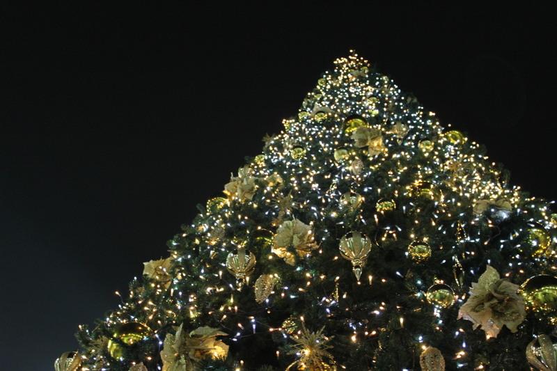 ヴィーナスフォートのクリスマスツリー