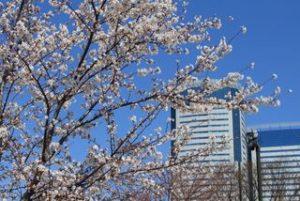 2012年4月の豊洲空間